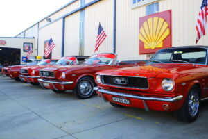 Ford Mustang Lineup (An Aussie Road Trip)