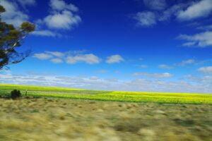 IMG_5503 (An Aussie Road Trip)