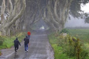 The-Dark-Hedges (Ireland 2017)
